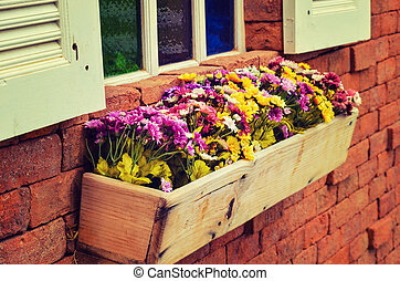 vendemmia, finestra, con, fiori