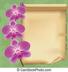 vendemmia, fondo, con, fiore, orchidea, e, carta