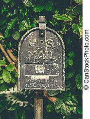 vendemmia, hawaiano, cassetta lettere