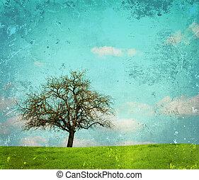 vendemmia, immagine, quercia, paesaggio, albero