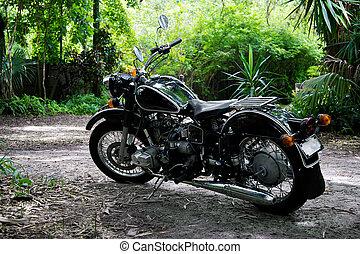 vendemmia, regolazione, nero, motocicletta, subtropicale