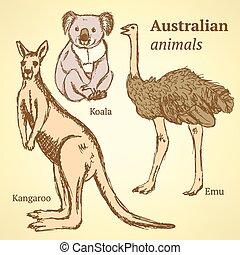 vendemmia, schizzo, australiano, animali, stile