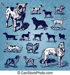 vendemmia, set, cani, (vector)
