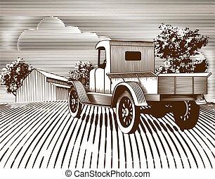 vendimia, camión, escena