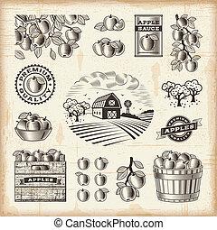 vendimia, conjunto, cosecha, manzana