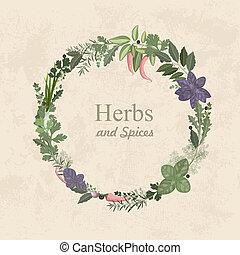 vendimia, etiqueta, hierbas, diseño, especias, su