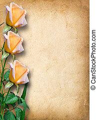 vendimia, felicitaciones, tarjeta, rosas amarillas