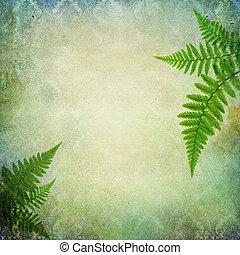 vendimia, hojas, plano de fondo, helecho
