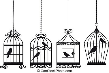 vendimia, jaulas de pájaros, con, aves