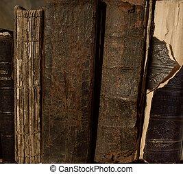 vendimia, libros, en, un, row.