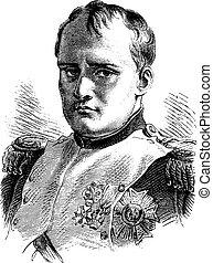 vendimia, napoleon, engraving.