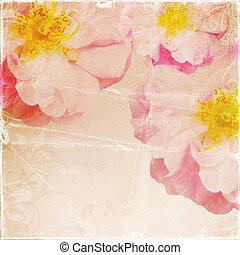 vendimia, papel, romántico, Plano de fondo, rosas