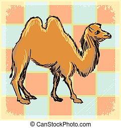 vendimia, plano de fondo, camello