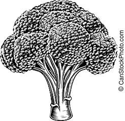 vendimia, retro, woodcut, bróculi