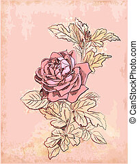 vendimia, rosa roja