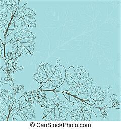 vendimia, vector, ilustración, con, uva, rama