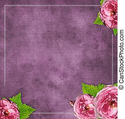 vendimia, vidrio, marco, en, grunge, plano de fondo, con, flores, en, álbum de recortes, estilo, (1, de, set)
