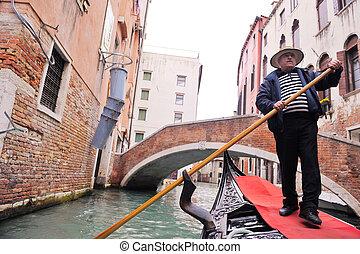 venecia italia, magnífico, conductor, góndola, canal