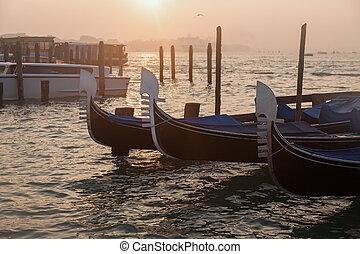 veneciano, góndolas, en, salida del sol, en, venecia