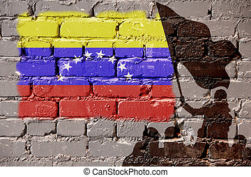 Venezuela flag on wall