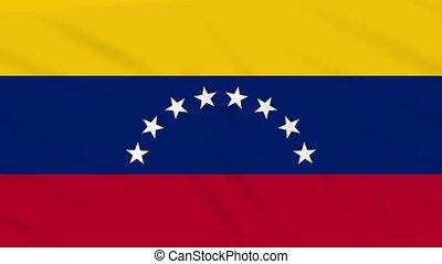 Venezuela flag waving cloth, background loop - Venezuela...