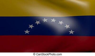 venezuela strong wind flag