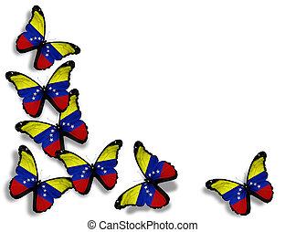 Venezuelan flag butterflies, isolated on white background