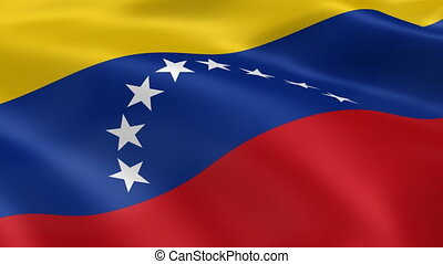 Venezuelan flag in the wind. Part of a series.