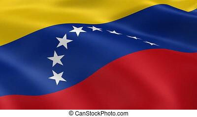 Venezuelan flag in the wind. Part of a series.