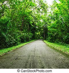 venkov, cesta