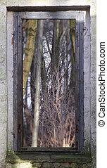 venster, door, blik