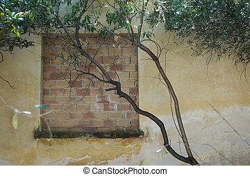 ventana, bricked, árbol, arriba, ramas