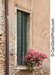ventana, con, flowers.