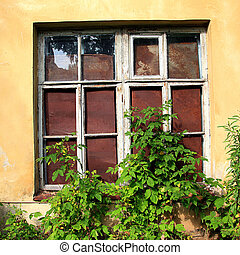 ventana, en, abandonado, casa