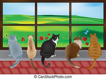 ventana, gatos, 5