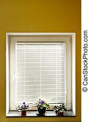 ventana, persianas