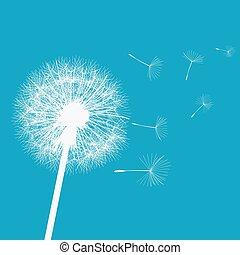 vento, dandelion