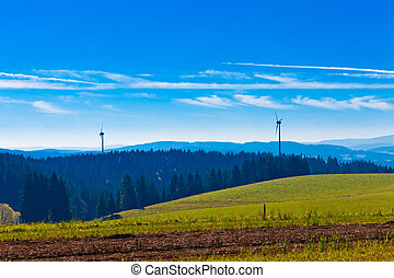 vento, pretas, turbinas, floresta, paisagem