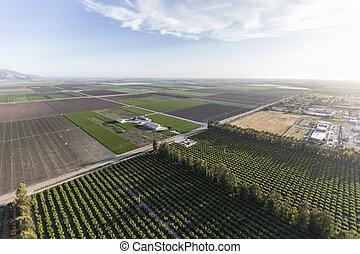 Ventura County Farm Fields Aerial
