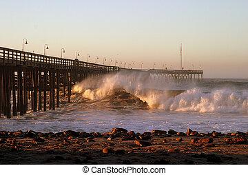 Ventura ocean Waves 2007-12-05 066
