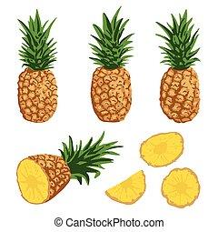 verão, abacaxis, jogo, isolado, vetorial, fundo, branca
