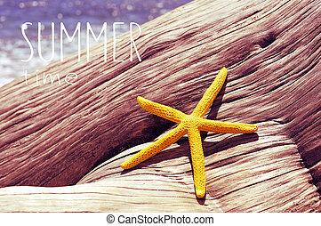 verão, antigas, starfish, praia, texto, tempo, árvore, efeito, retro, tronco