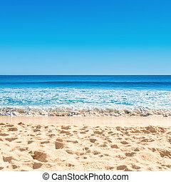 verão, arenoso, azul, tropicais, onda, férias, praia., oceânicos, conceito