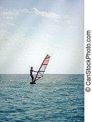 verão, atlético, adelgaçar, resort., jovem, férias, windsurf, tábua, mar, menina, velas, abertos, windsurfing