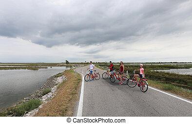 verão, bicicleta, família, feliz