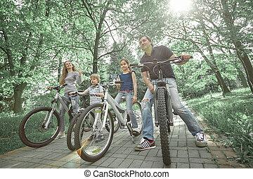 verão, bicicletas, parque, família