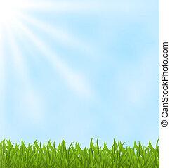 verão, céu, experiência verde, campo