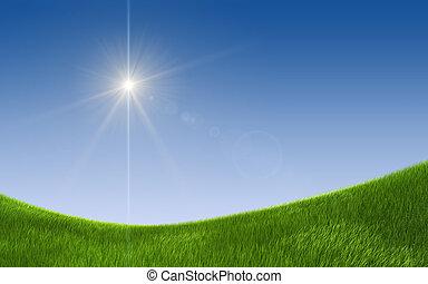 verão, campo verde