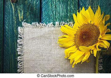 verão, flor, arte, girassol, vindima, fundo, floral