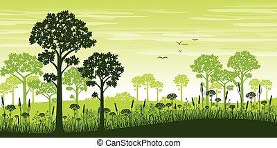 verão, floresta